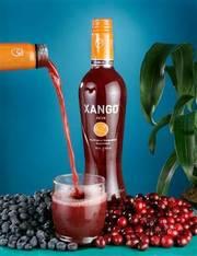Компания Ксанго - для тех,  кто ищет реальное дело